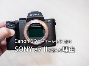 【フルサイズカメラα7ii】Canon 6D使いがサブカメラにSONY a7 IIを選んだ理由【ILCE-7M2】