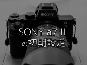 【ミラーレスカメラ初期設定】SONYのカメラ初心者がa7 IIを購入して最初にした設定【α7ii】