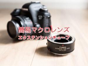 【接写リングの使い方】簡易的にマクロ撮影を実現するエクステンションチューブ【Canon EF25 II 使用レ...