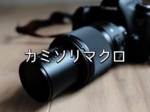 【レビューと作例】シグマの新型カミソリマクロレンズで撮影【SIGMA 70mm F2.8 DG MACRO | Art】