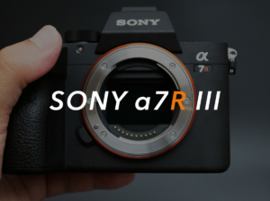 【SONY a7R3を購入】α7IIからα7IIIではなくα7RIIIへのステップアップの理由【a7Riii】