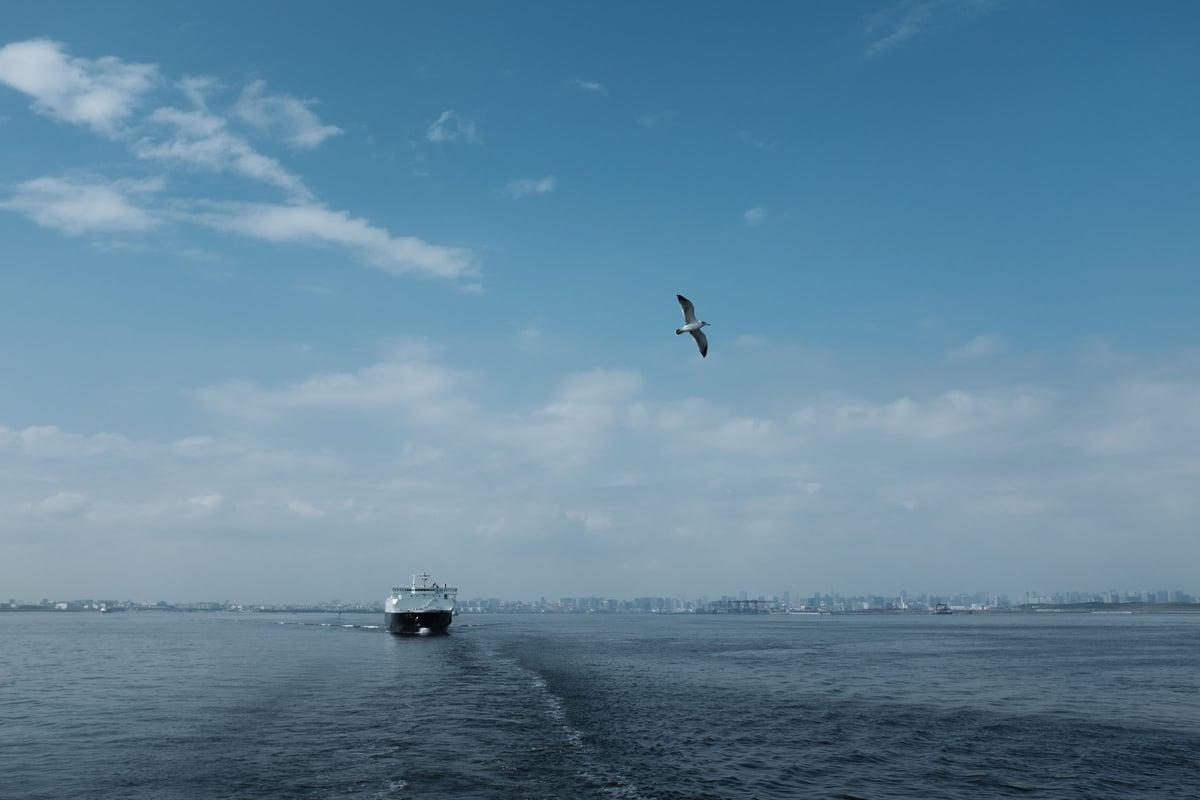 f:id:drone_skyfish:20181003083908j:plain