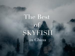 【ドローン空撮】中国で撮影したダイジェスト映像とベストな絶景写真を紹介
