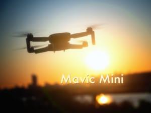 【これからドローンを始める方へ】使ってみて分かったDJI Mavic Miniの注意点